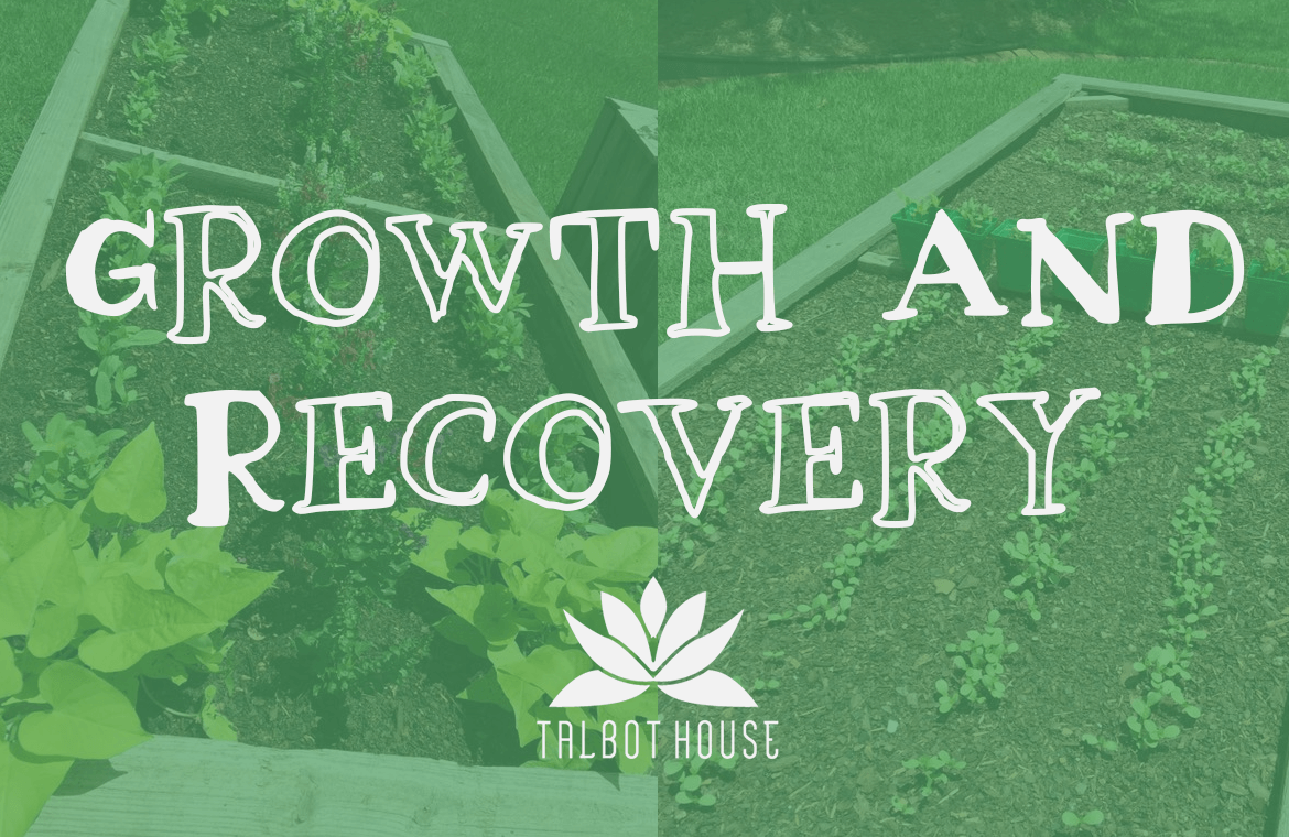 Growth and Recovery